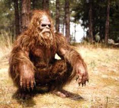 bigfoot_skullc
