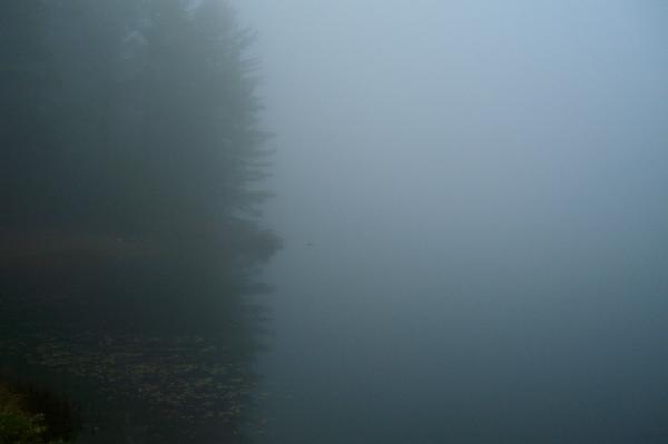 misty