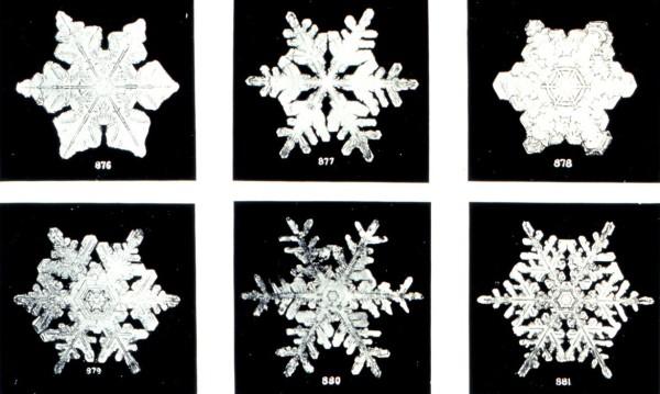 snowflake_c_NOAA